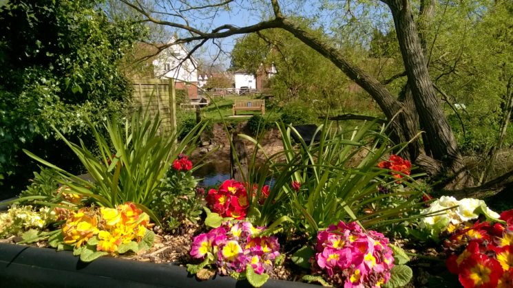 Distant view of listening bench seen through spring flowers | Anne Townley