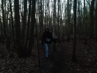 Early morning in the thick of Hockley Woods.   Josh Langan