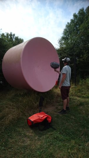 'Sound marshmallows' at Wat Tyler Country Park, Pitsea | Stuart Bowditch