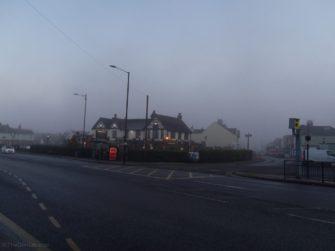 The Elms fog