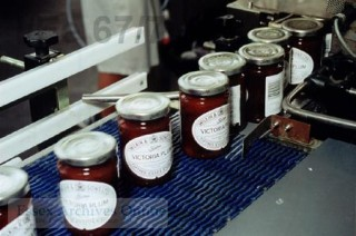 Photograph of row of jam jars showing Wilkin and Sons label | Jean Michel