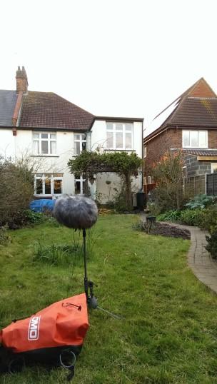 Hilary's Garden, Leigh-on-Sea.   Stuart Bowditch