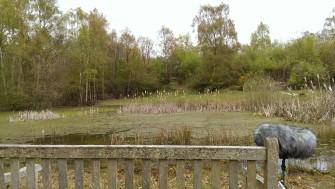 Bench next to the Trout Pond. | Stuart Bowditch