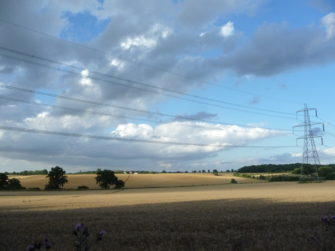Wheat fields near Wickham St.Paul | Stuart Bowditch