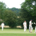 Cricket match, Broomfield vs Woodham Mortimer, 2016