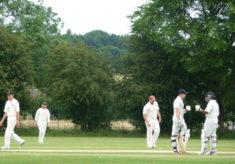 Cricket match, Broomfield vs Woodham Mortimer, 2016
